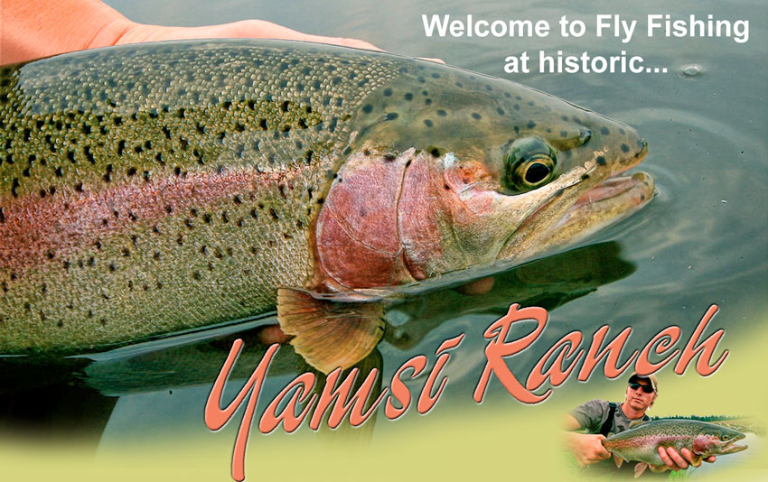 Yamsi Fly Fishing
